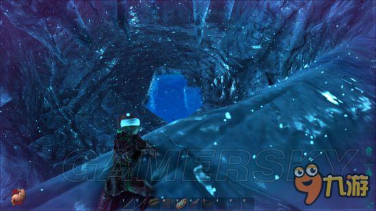各位玩家对《方舟生存进化》中心岛地图中的矿洞了解多少呢?下面小编给大家带来的是《方舟生存进化》中心岛地图矿洞详解,跟小编一起来看看吧。 小矿洞 大概坐标35-43入口比较小里面环境优美资源很多有珍珠洞之称,是和队友休闲探险的绝佳场所。乌龟等稍大龙无法进入。是易守难攻的世外桃源,不过要注意矿洞有杀害加倍。里面有2个神器宝箱,3个藏宝箱。分别为猎手神器 和团结神器 。      大矿洞 大概坐标30-65里面很宽敞,入口处有悬崖里面禁飞的话容易掉下去。注意危险。温度很高,如果去探险,记的多带水瓶