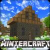 冬季工艺4:冰河时代