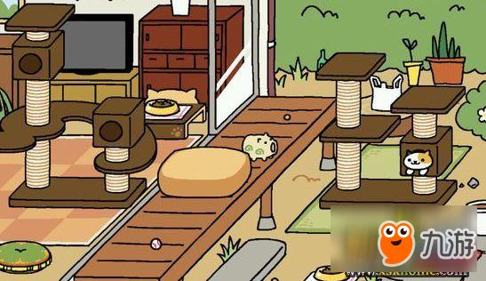 《猫咪后院》吸金道具那个好