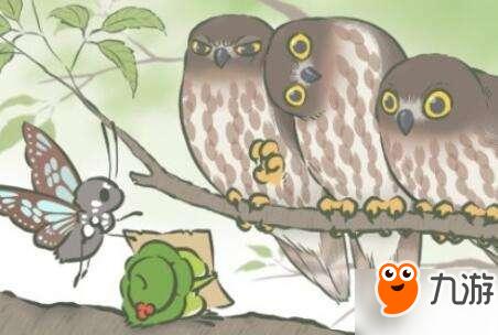 旅行青蛙ssr照片获取方式.下面跟着小编一起来看看吧!