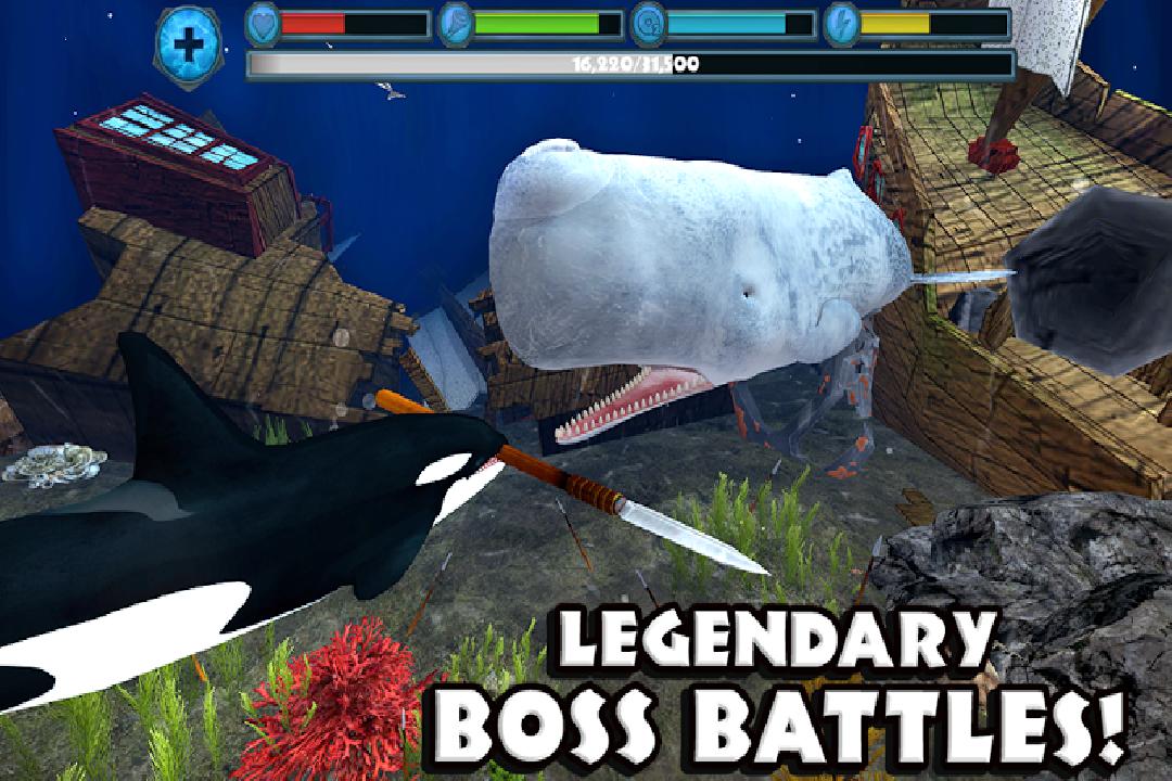 虎鲸模拟(免费版)好玩吗 虎鲸模拟(免费版)玩法简介