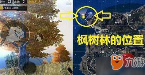 《绝地求生刺激战场》绝地海岛野餐点在哪 海岛地图野餐聚点位置详解