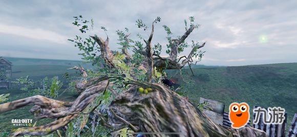 《使命召唤》手游树妖彩蛋有哪些 树妖boss彩蛋介绍
