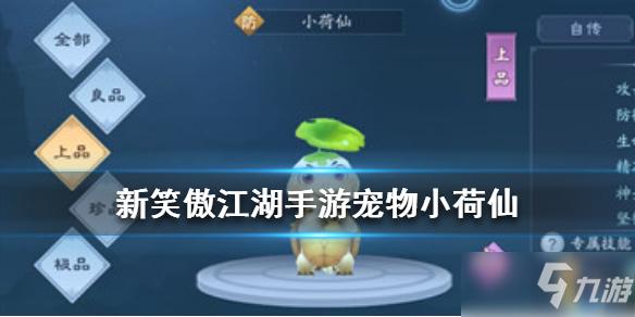 《新笑傲江湖》小荷仙厉害吗 宠物小荷仙技能详解