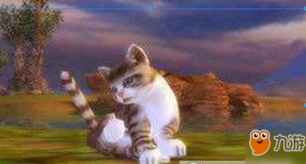 完美世界手游梅花猫宠物攻略 位置在哪