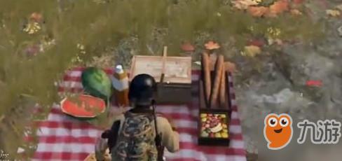 和平精英野餐点位置介绍