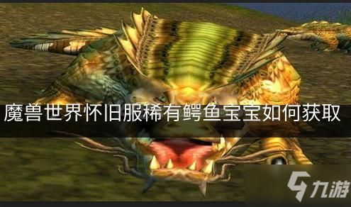 《魔兽世界怀旧服》稀有鳄鱼宝宝属性介绍 获取稀有鳄鱼宝宝的位置分享