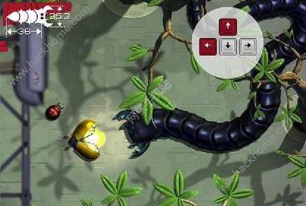 虫类大作战好玩吗 虫类大作战玩法简介