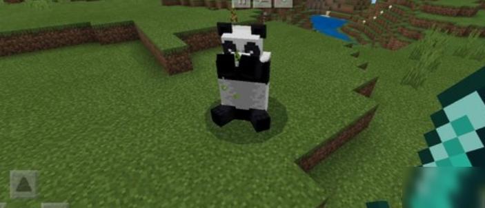 《我的世界》熊猫怎么驯服 熊猫驯服方法介绍