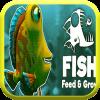饲养和生长一条鱼加速器