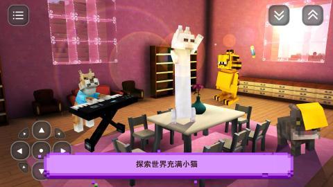 猫游戏的故事: 一个女孩的游戏创意 Girls Craft截图2