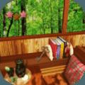 房间逃脱游戏:小鸟访问的房间
