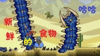 【天铭解说】泰拉瑞亚仙人掌MOD 18 沙漠食人虫!