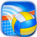 Volleyball Champions 3D 2014加速器