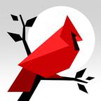 红雀之地加速器