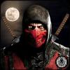 Superhero Ninja Samurai Saga Warrior Sword Fight 2加速器