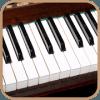 风琴的键盘2017