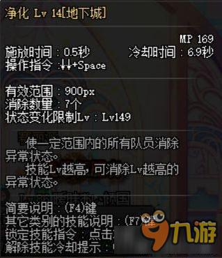 dnf90级圣骑士纯辅助图片