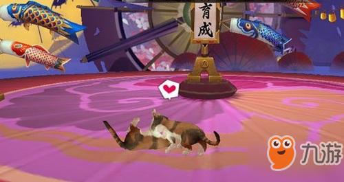 阴阳师庭院宠物进阶方法
