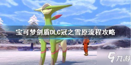 《宝可梦剑盾》冠之雪原通关攻略 DLC冠之雪原打法技巧介绍