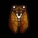 《集合啦动物森友会》油蝉怎么样 油蝉属性资料图鉴