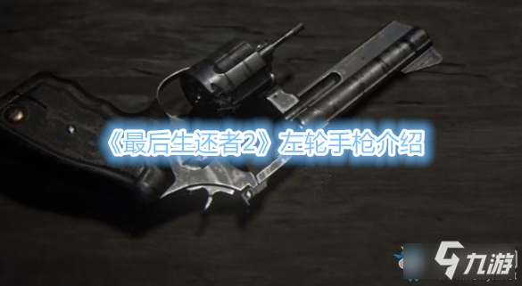 《最后生还者2》左轮手枪怎么样 左轮手枪介绍