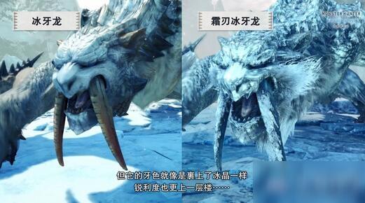《怪物猎人:世界》冰原霜刃冰牙龙开放时间