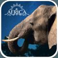 3D大象育成