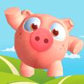 猪与鸟共舞