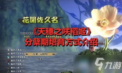 《天穗之咲稻姬》分蘖期培育方式介绍