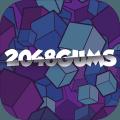 2048Gums3D